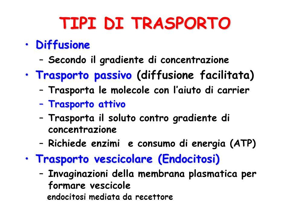 TIPI DI TRASPORTO Diffusione Trasporto passivo (diffusione facilitata)