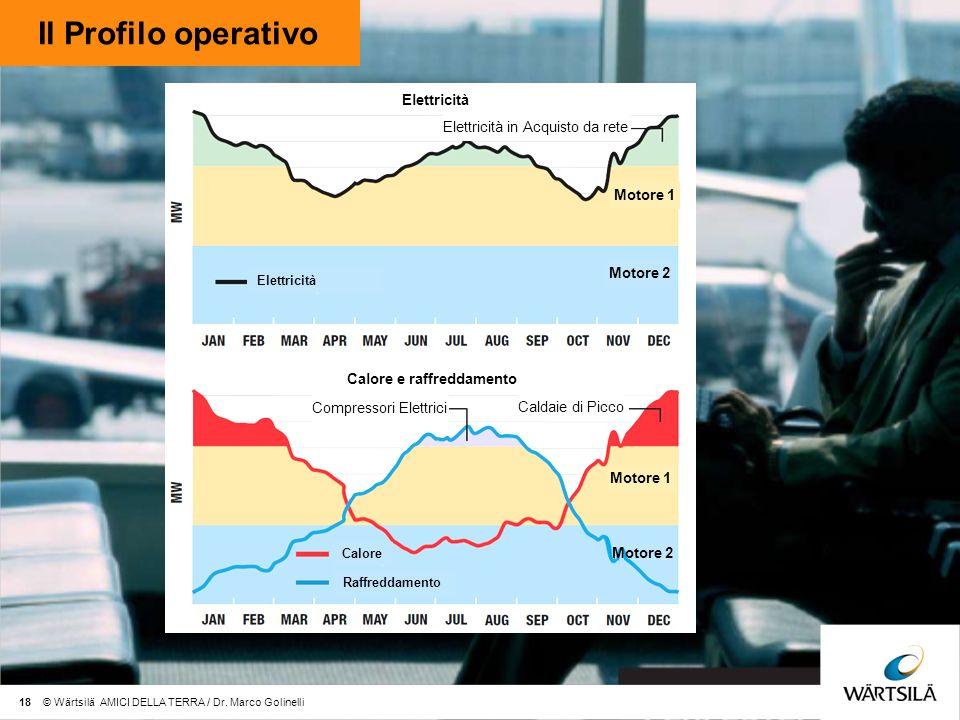 Il Profilo operativo Elettricità Elettricità in Acquisto da rete