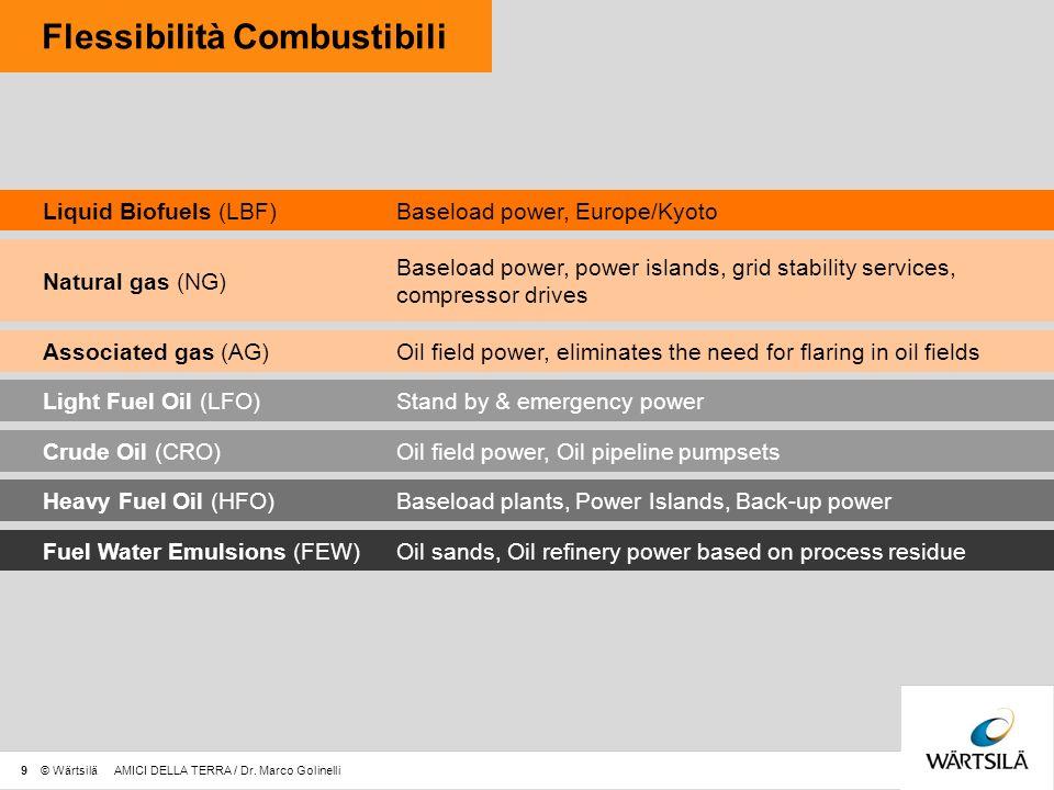 Flessibilità Combustibili