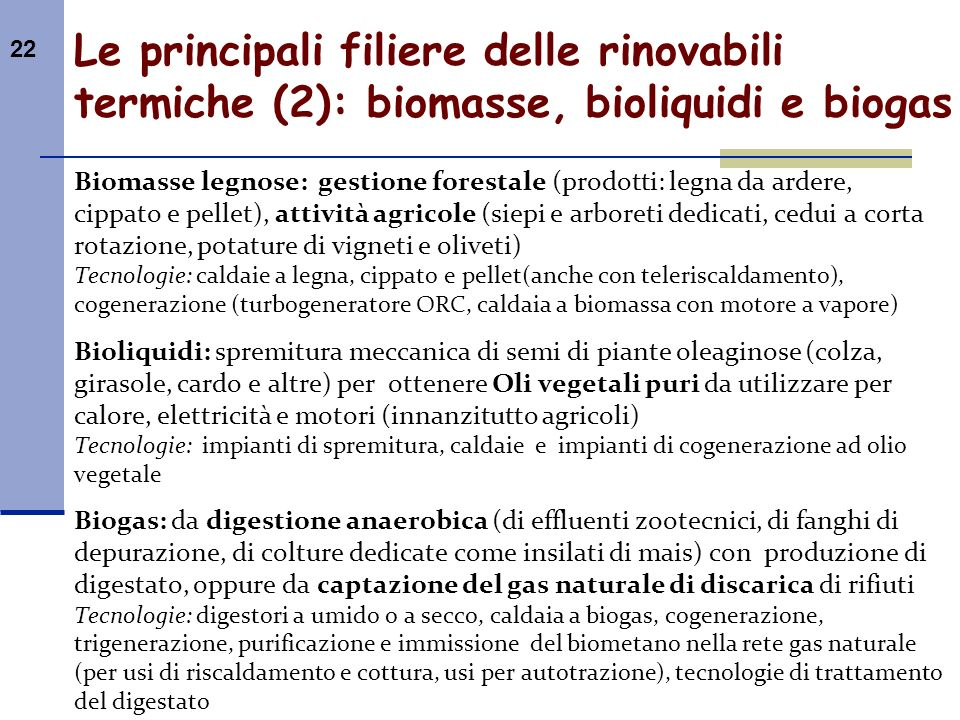 Le principali filiere delle rinovabili termiche (2): biomasse, bioliquidi e biogas