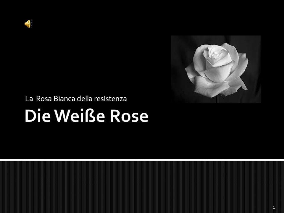 La Rosa Bianca della resistenza