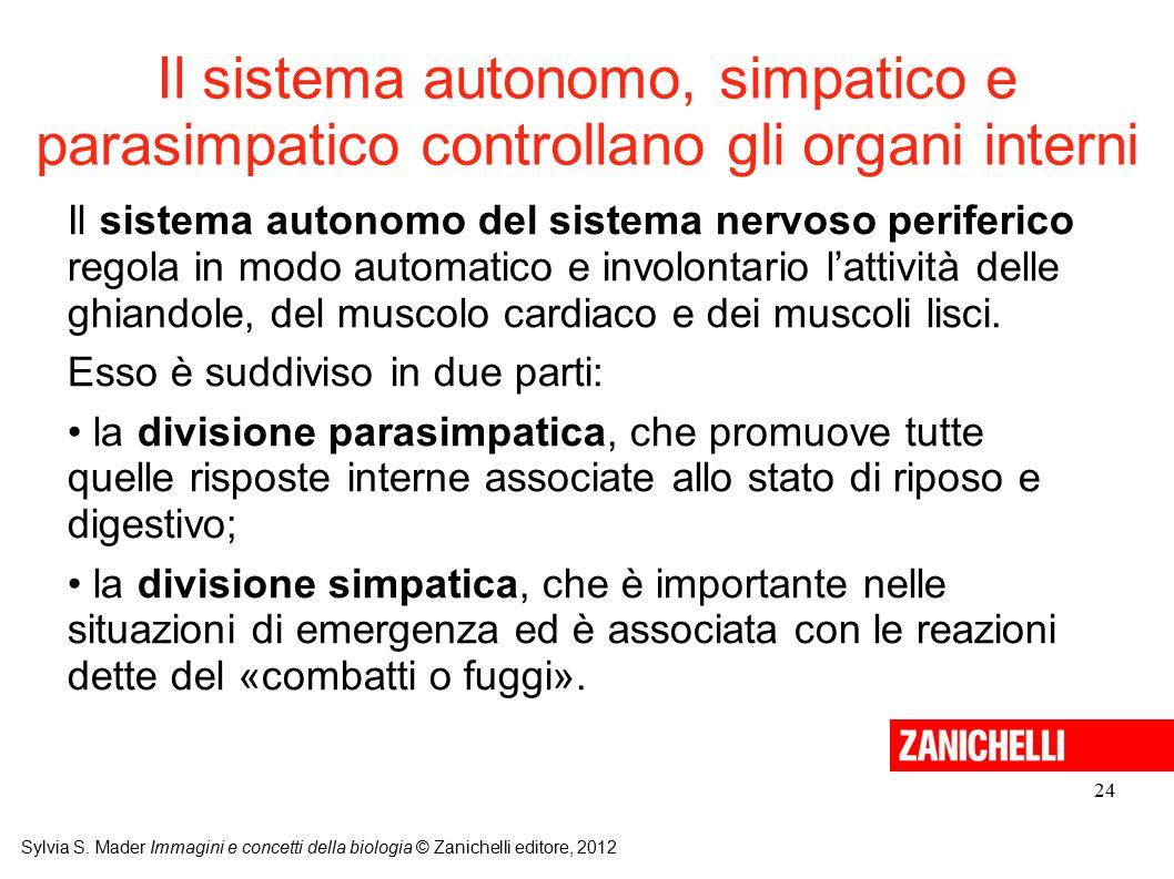 Il sistema autonomo, simpatico e parasimpatico controllano gli organi interni