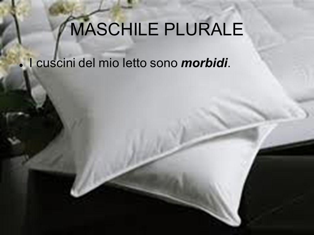 MASCHILE PLURALE I cuscini del mio letto sono morbidi.