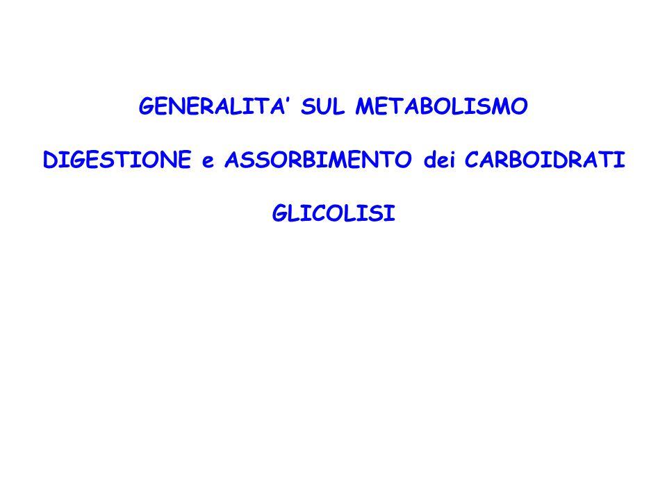 GENERALITA' SUL METABOLISMO DIGESTIONE e ASSORBIMENTO dei CARBOIDRATI