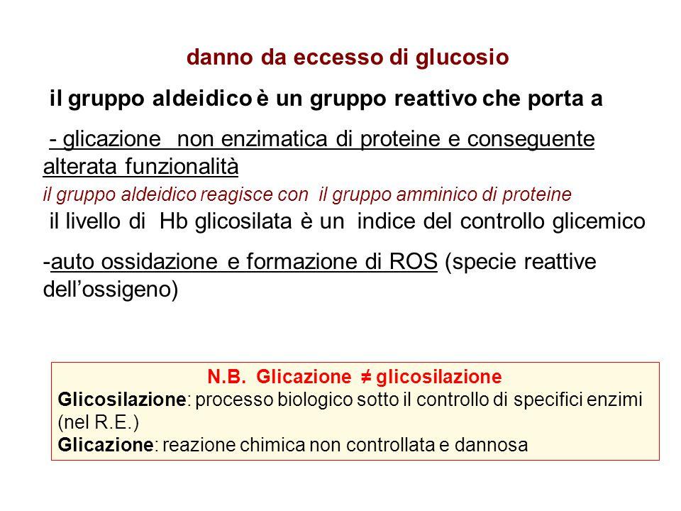 danno da eccesso di glucosio