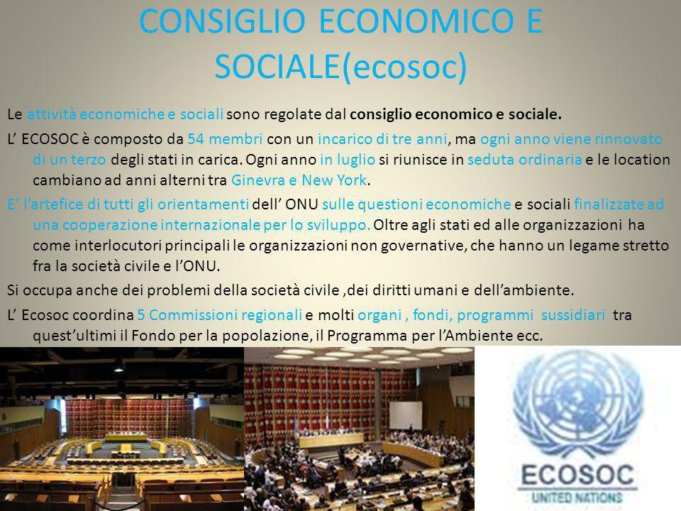CONSIGLIO ECONOMICO E SOCIALE(ecosoc)