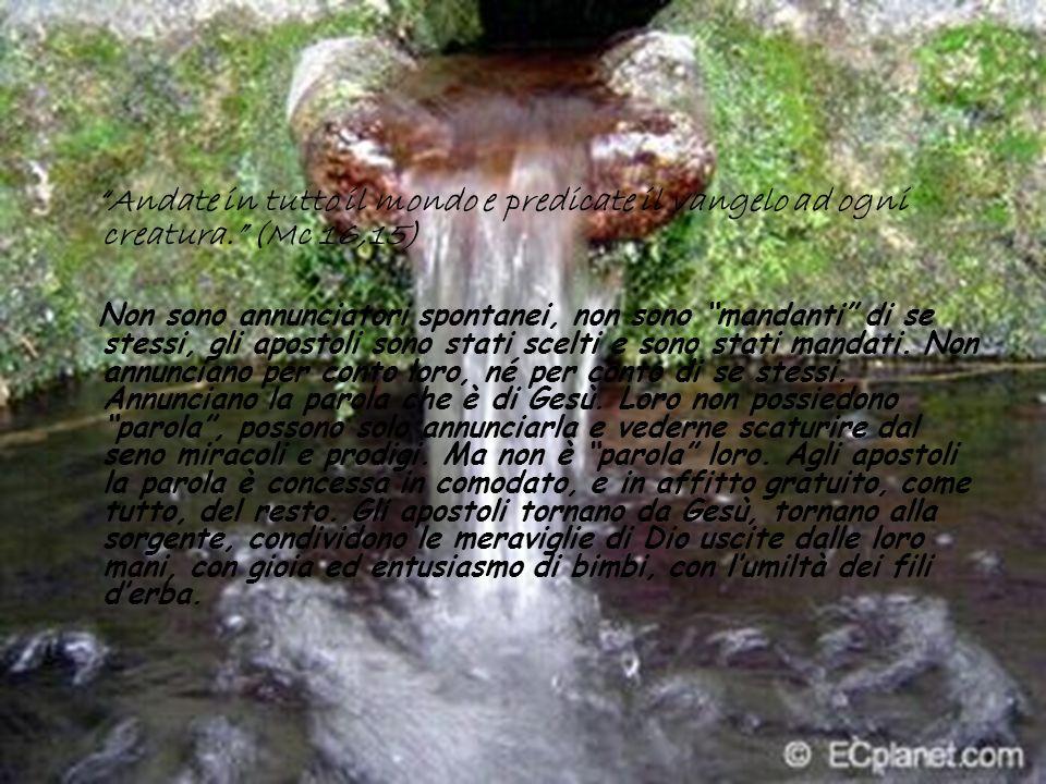 Andate in tutto il mondo e predicate il vangelo ad ogni creatura