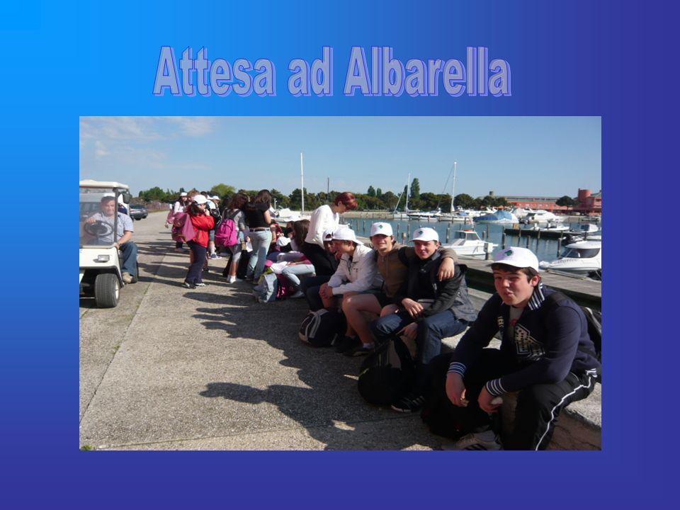 Attesa ad Albarella