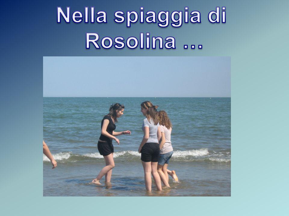Nella spiaggia di Rosolina …