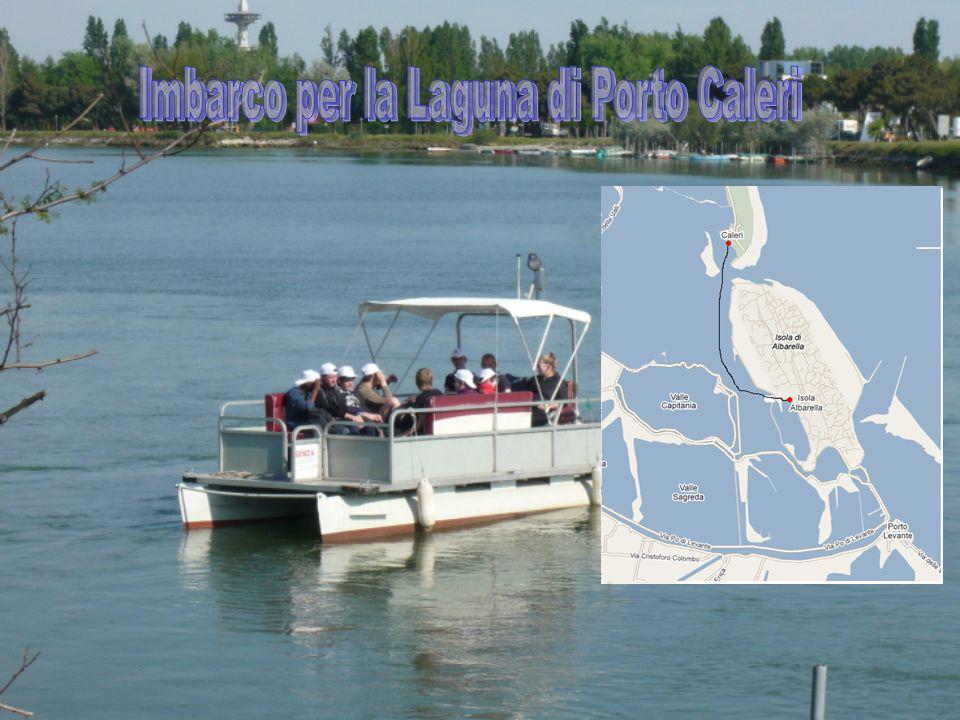 Imbarco per la Laguna di Porto Caleri