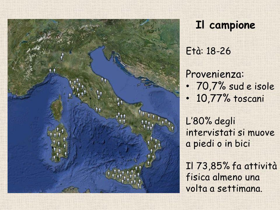 Il campione Provenienza: 70,7% sud e isole 10,77% toscani Età: 18-26