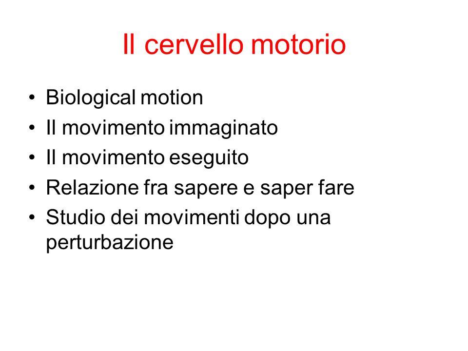 Il cervello motorio Biological motion Il movimento immaginato