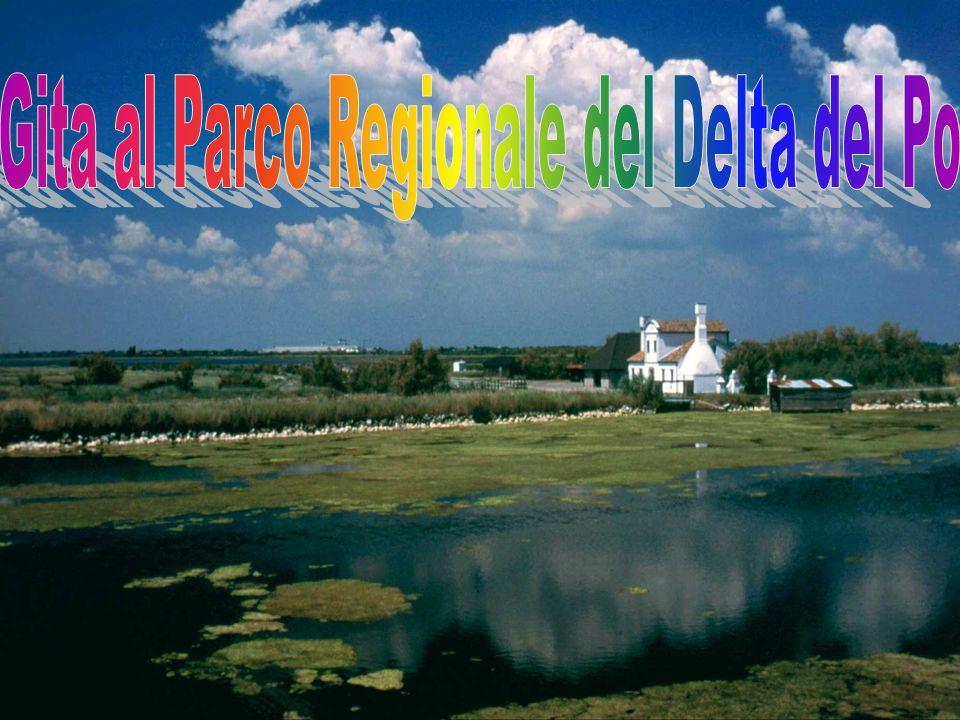 Gita al Parco Regionale del Delta del Po