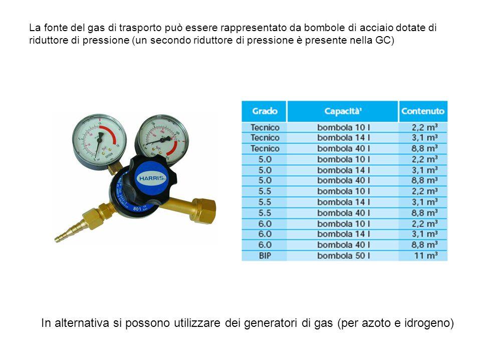 La fonte del gas di trasporto può essere rappresentato da bombole di acciaio dotate di riduttore di pressione (un secondo riduttore di pressione è presente nella GC)