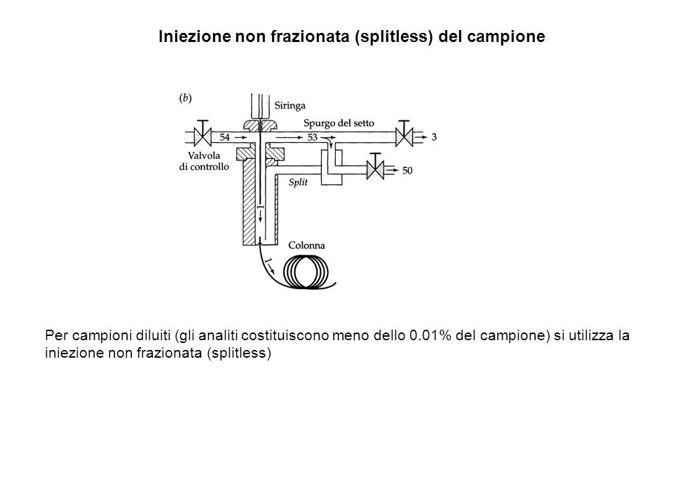 Iniezione non frazionata (splitless) del campione