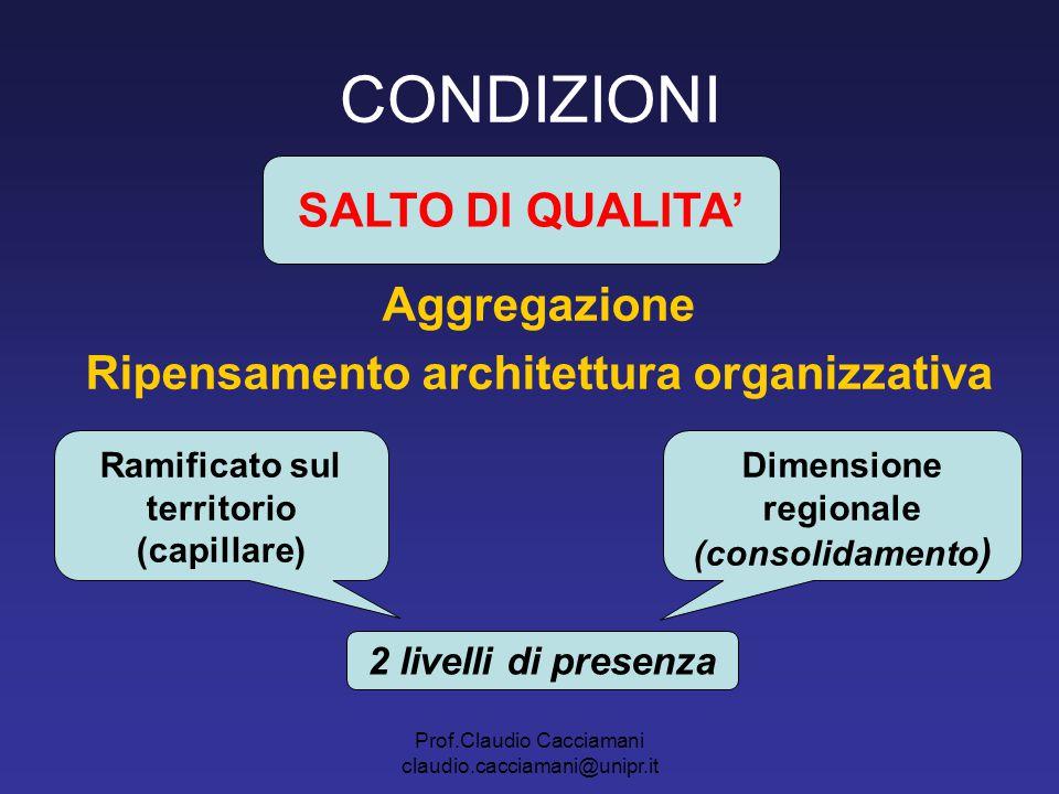 Ripensamento architettura organizzativa Ramificato sul territorio