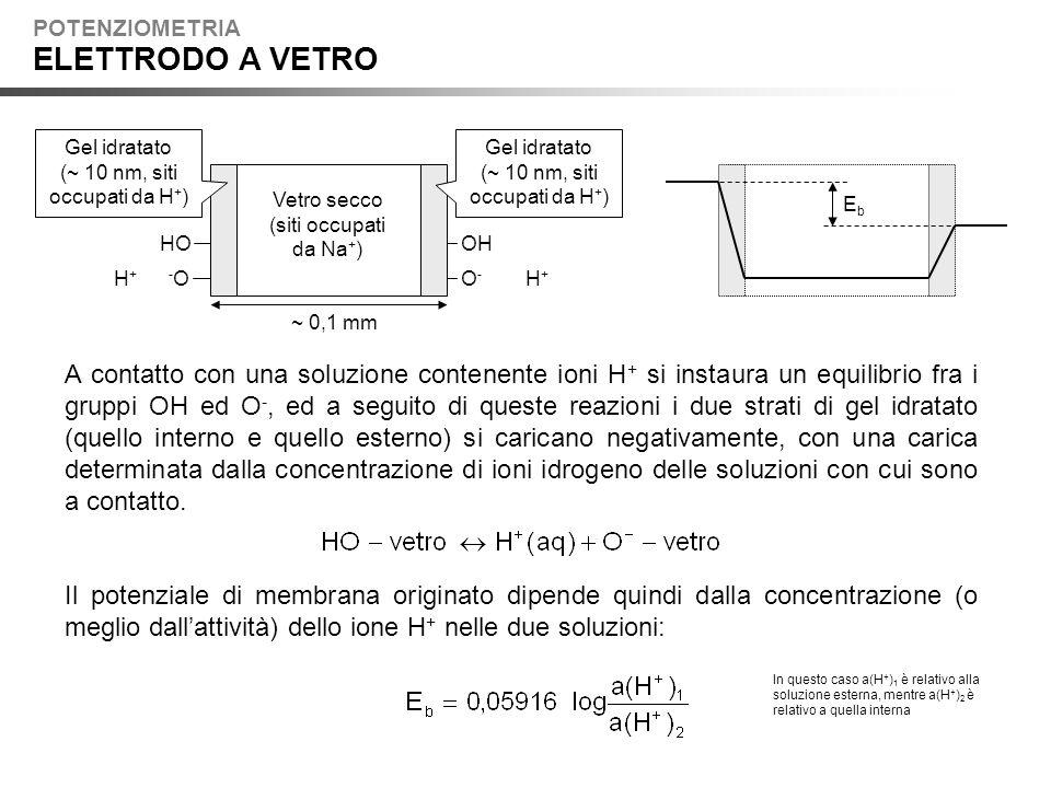 POTENZIOMETRIA ELETTRODO A VETRO. Gel idratato. (~ 10 nm, siti occupati da H+) Gel idratato. (~ 10 nm, siti occupati da H+)