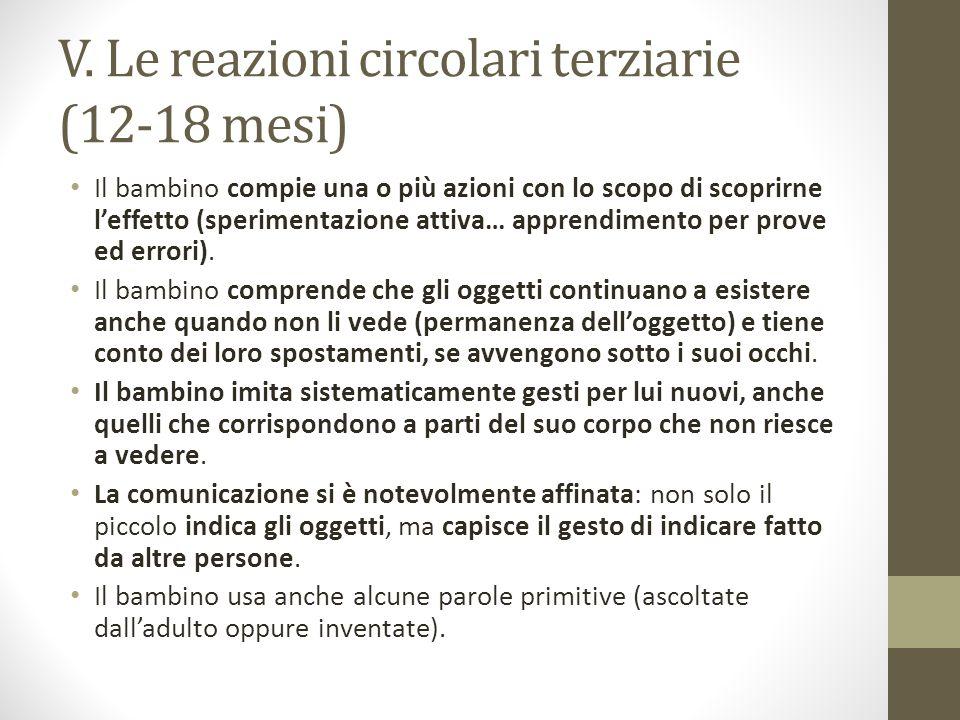 V. Le reazioni circolari terziarie (12-18 mesi)