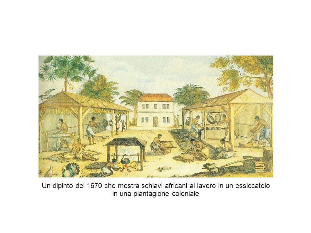 Un dipinto del 1670 che mostra schiavi africani al lavoro in un essiccatoio in una piantagione coloniale