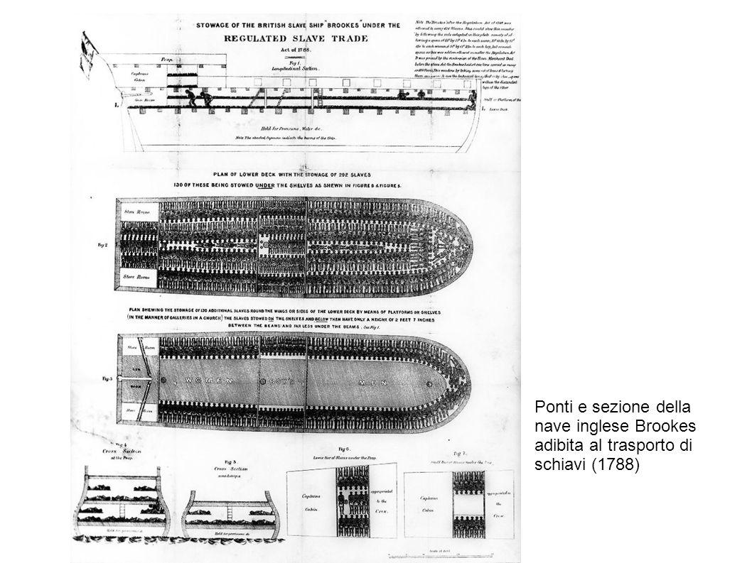 Ponti e sezione della nave inglese Brookes adibita al trasporto di schiavi (1788)