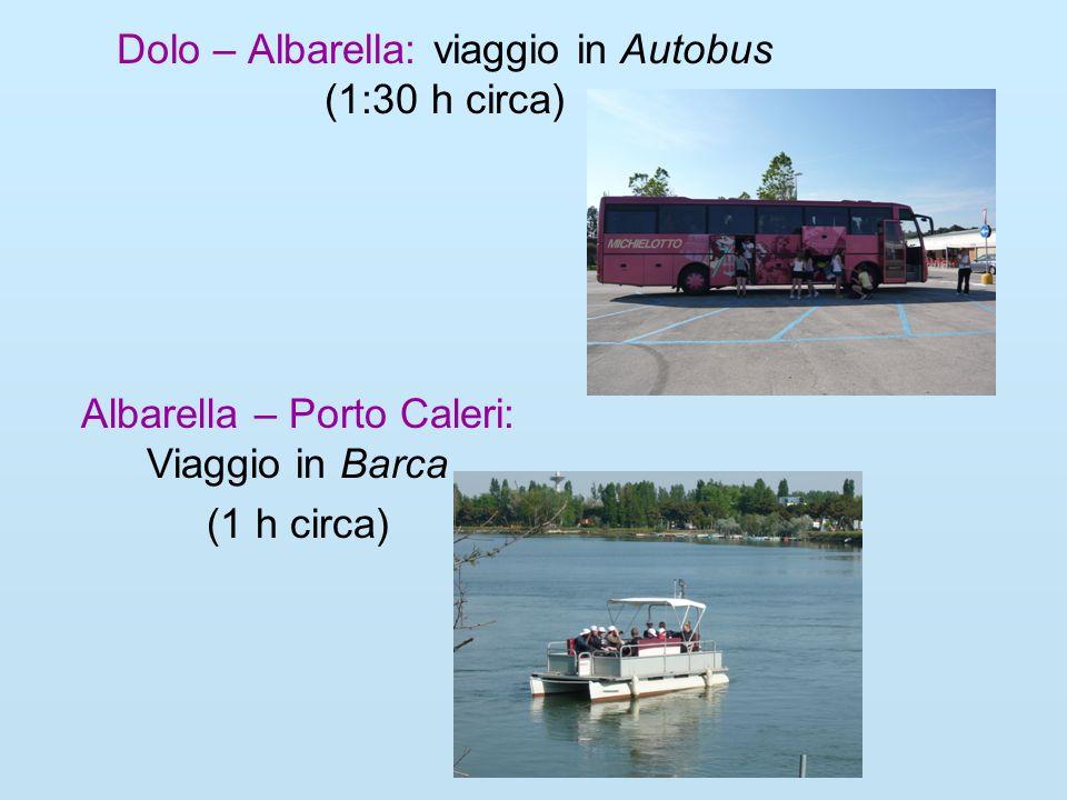 Dolo – Albarella: viaggio in Autobus (1:30 h circa)