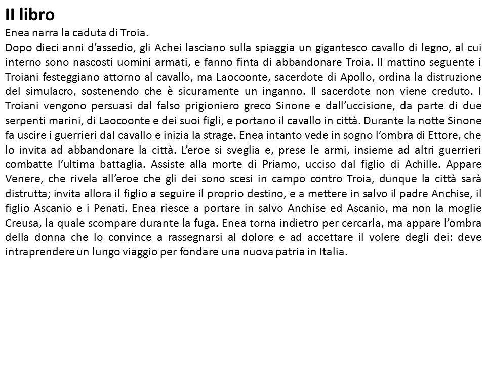 II libro Enea narra la caduta di Troia.