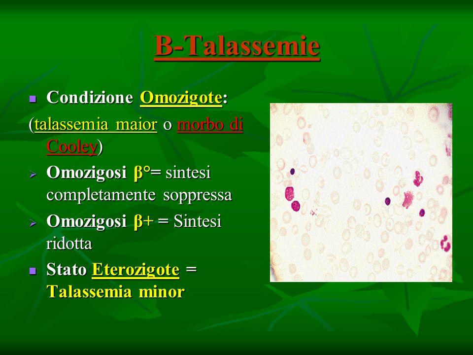 Β-Talassemie Condizione Omozigote: