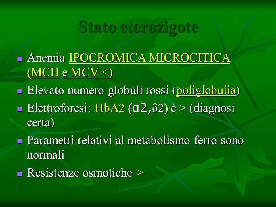 Stato eterozigote Anemia IPOCROMICA MICROCITICA (MCH e MCV <)