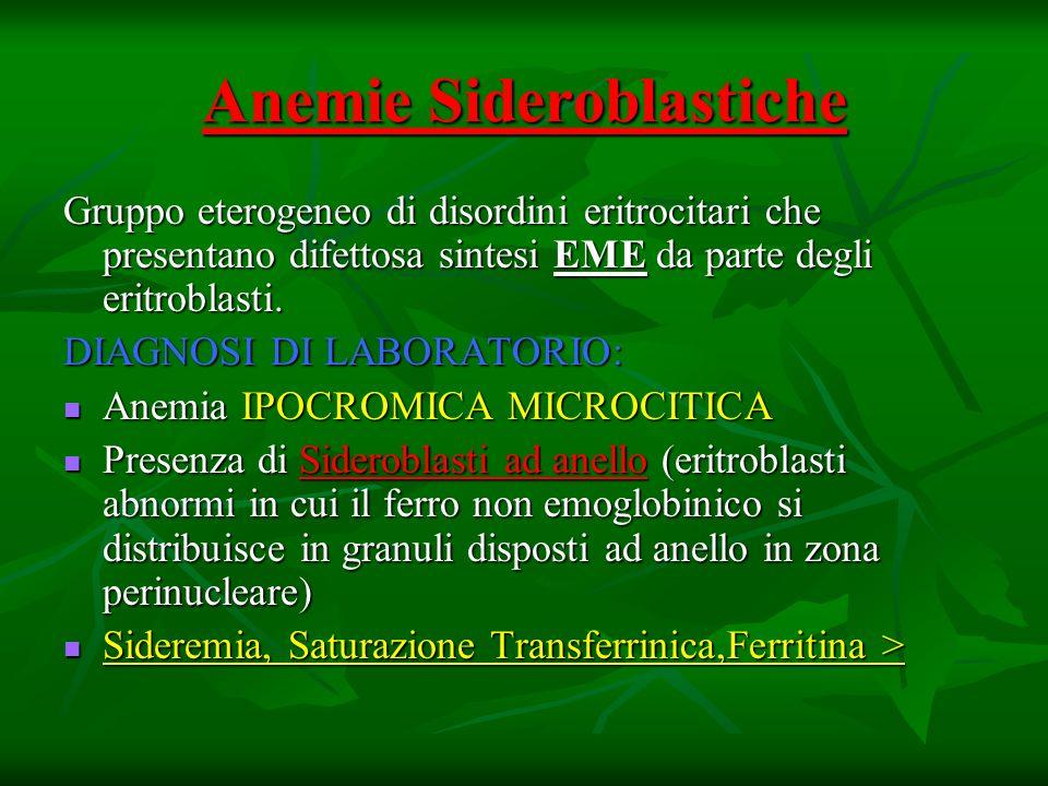 Anemie Sideroblastiche