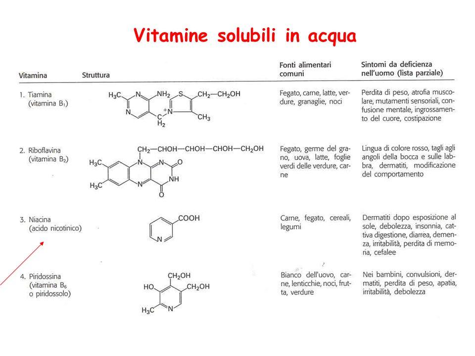 Vitamine solubili in acqua