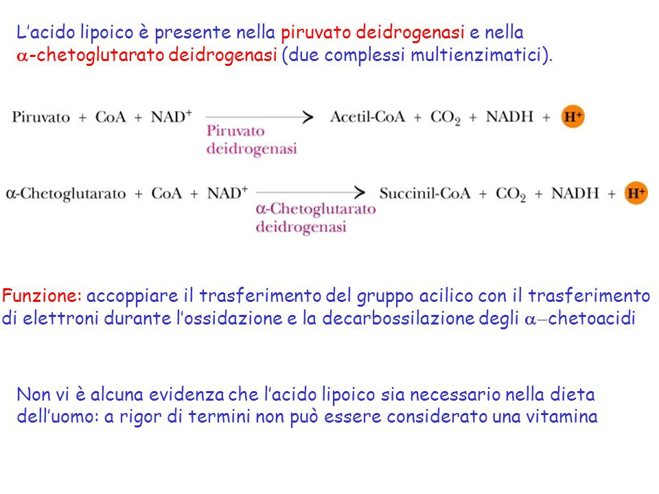 L'acido lipoico è presente nella piruvato deidrogenasi e nella