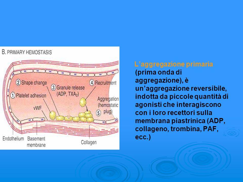 L'aggregazione primaria (prima onda di aggregazione), è un'aggregazione reversibile, indotta da piccole quantità di agonisti che interagiscono con i loro recettori sulla membrana piastrinica (ADP, collageno, trombina, PAF, ecc.)