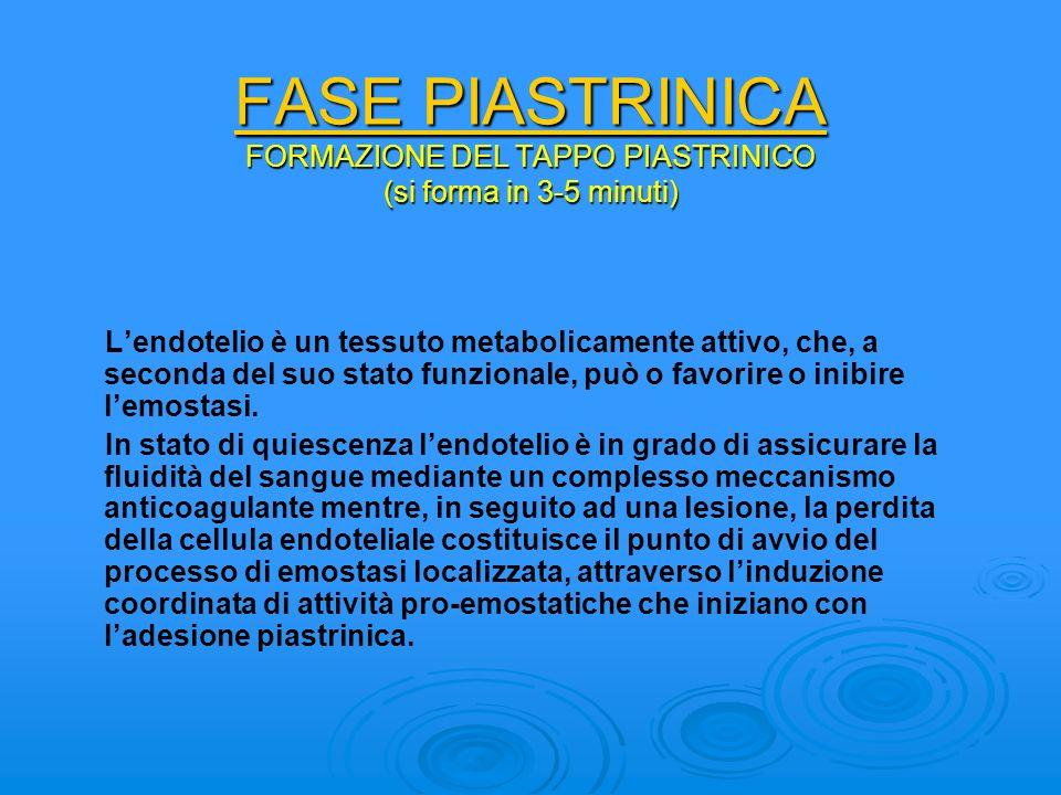 FASE PIASTRINICA FORMAZIONE DEL TAPPO PIASTRINICO (si forma in 3-5 minuti)