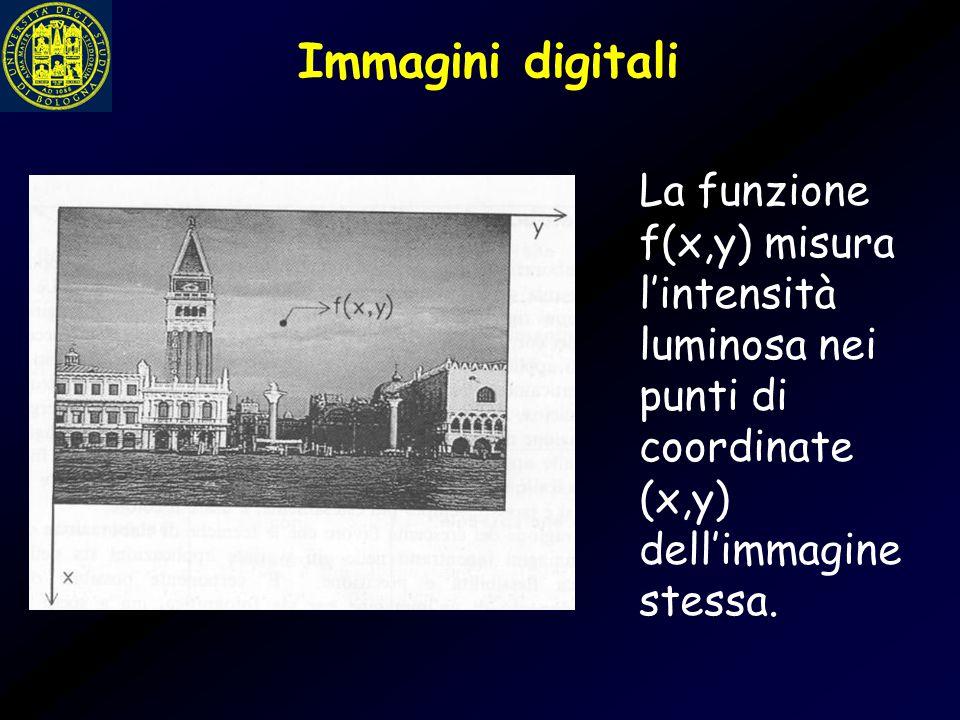 Immagini digitali La funzione f(x,y) misura l'intensità luminosa nei punti di coordinate (x,y) dell'immagine stessa.