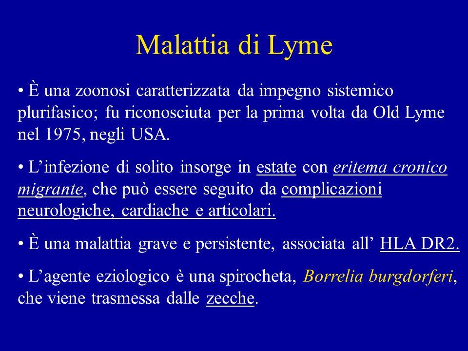 Malattia di Lyme È una zoonosi caratterizzata da impegno sistemico plurifasico; fu riconosciuta per la prima volta da Old Lyme nel 1975, negli USA.