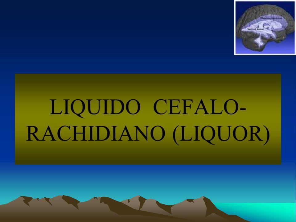 LIQUIDO CEFALO-RACHIDIANO (LIQUOR)
