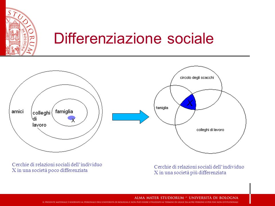 Differenziazione sociale