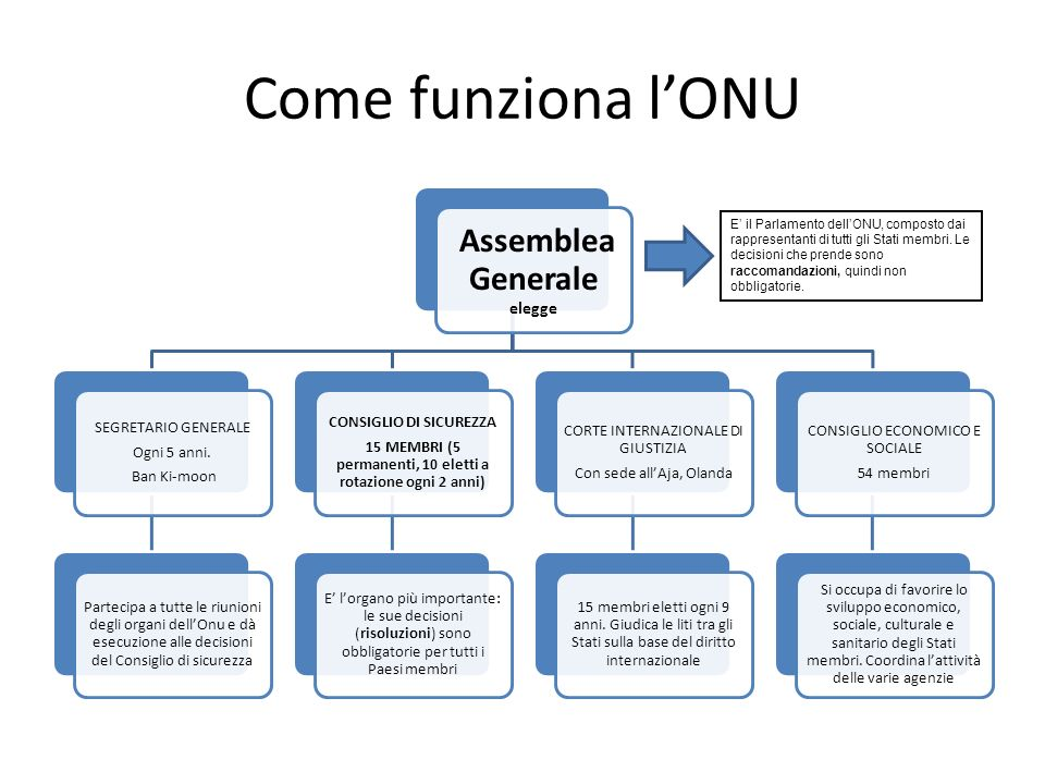 Come funziona l'ONU Assemblea Generale elegge