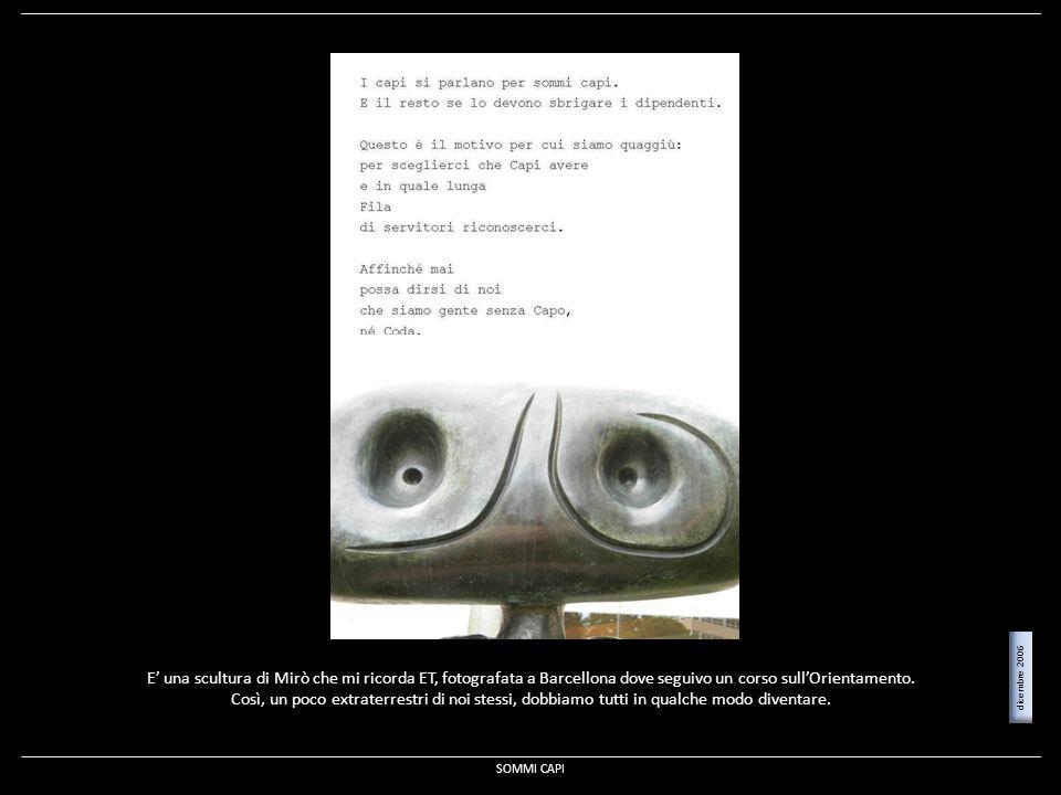 E' una scultura di Mirò che mi ricorda ET, fotografata a Barcellona dove seguivo un corso sull'Orientamento.