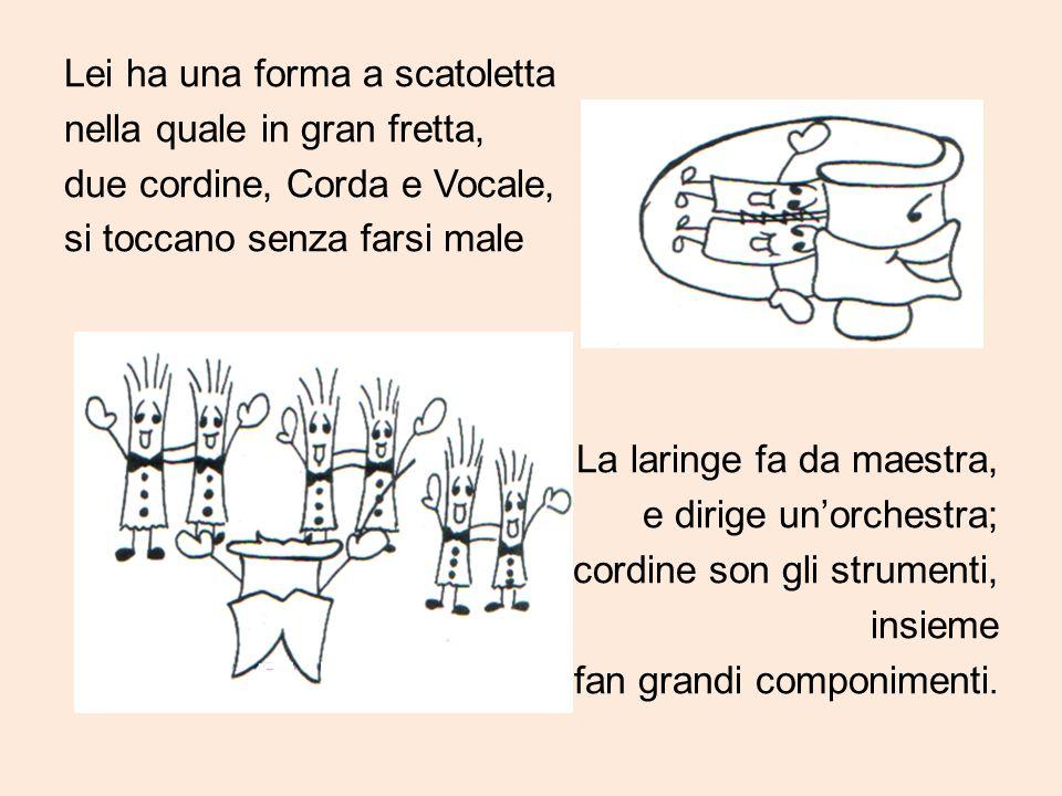 Lei ha una forma a scatoletta nella quale in gran fretta, due cordine, Corda e Vocale, si toccano senza farsi male La laringe fa da maestra, e dirige un'orchestra; le cordine son gli strumenti, insieme fan grandi componimenti.