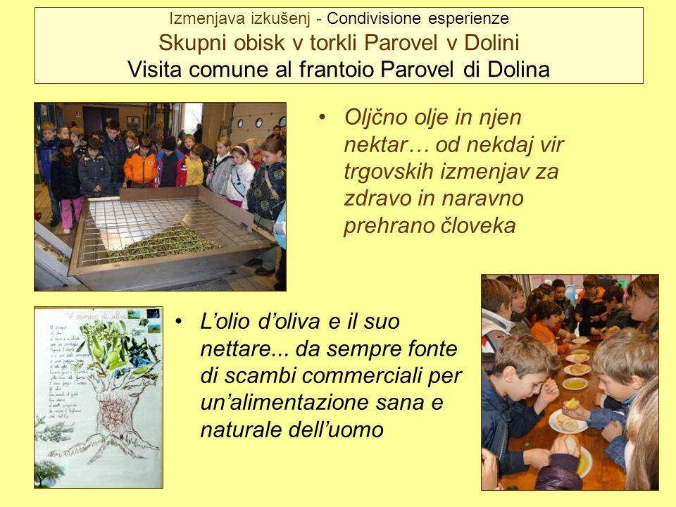 Izmenjava izkušenj - Condivisione esperienze Skupni obisk v torkli Parovel v Dolini Visita comune al frantoio Parovel di Dolina