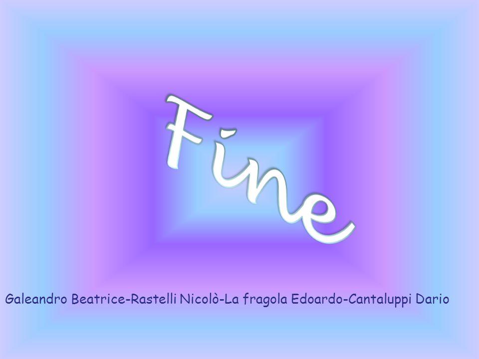 Fine Galeandro Beatrice-Rastelli Nicolò-La fragola Edoardo-Cantaluppi Dario