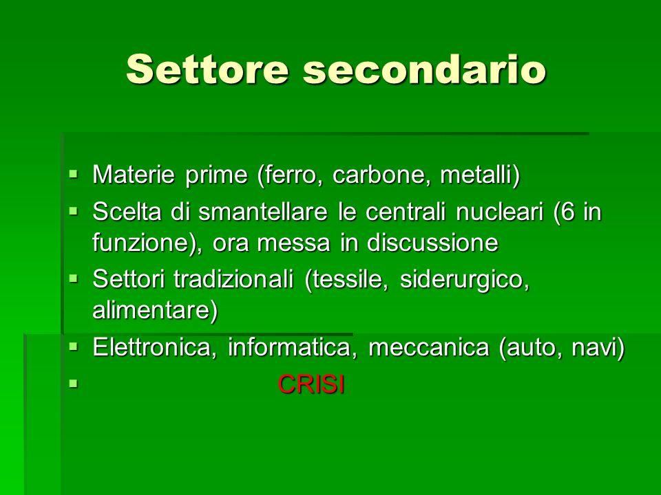 Settore secondario Materie prime (ferro, carbone, metalli)