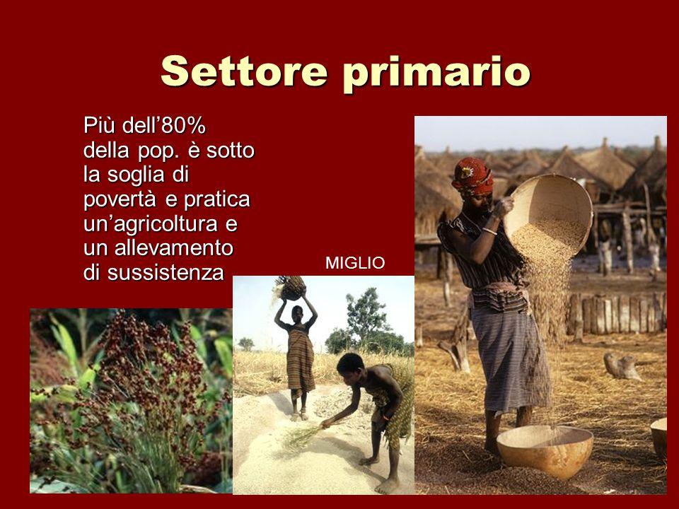 Settore primario Più dell'80% della pop. è sotto la soglia di povertà e pratica un'agricoltura e un allevamento di sussistenza.