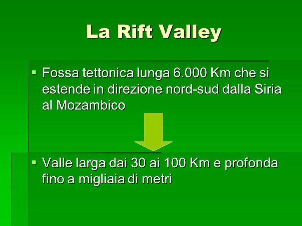 La Rift Valley Fossa tettonica lunga 6.000 Km che si estende in direzione nord-sud dalla Siria al Mozambico.