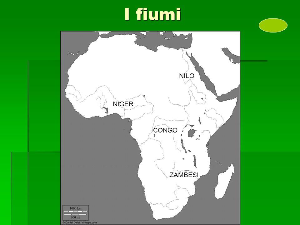 I fiumi NILO NIGER CONGO ZAMBESI