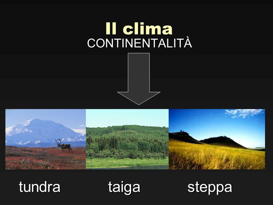 Il clima CONTINENTALITÀ tundra taiga steppa