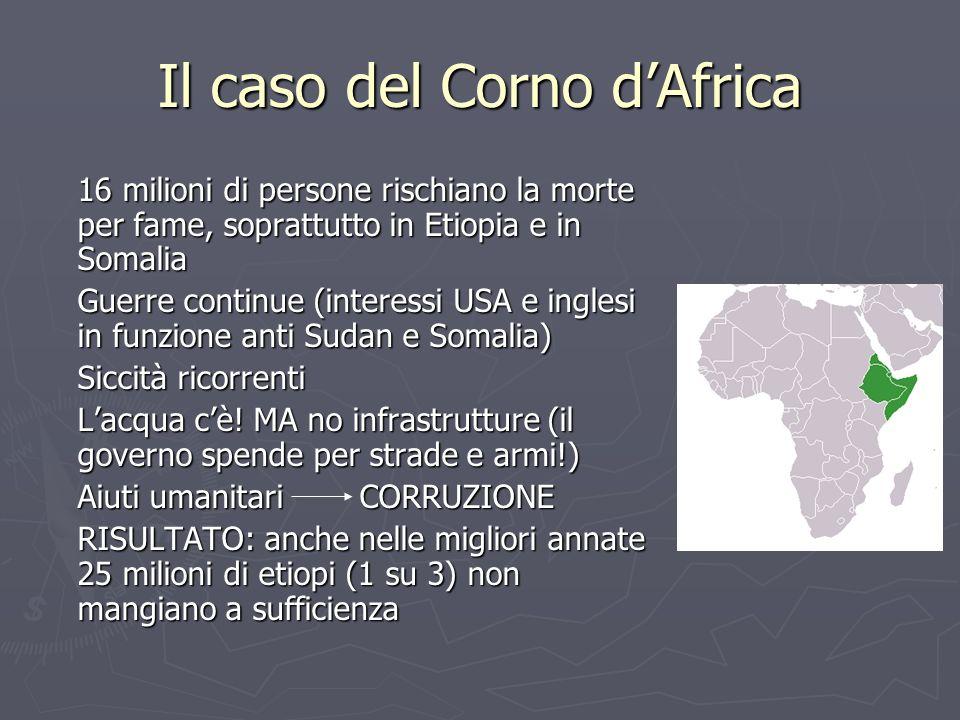 Il caso del Corno d'Africa