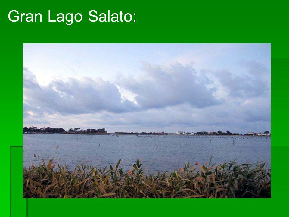 Gran Lago Salato: