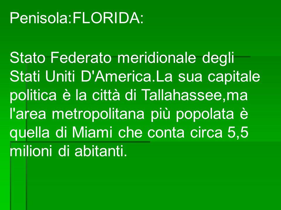 Penisola:FLORIDA: